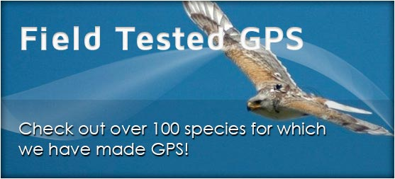 Field Tested GPS