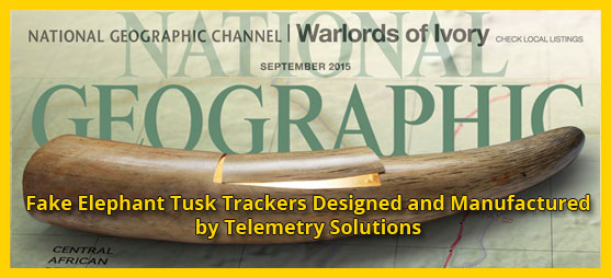 GPS trackers for artificial tusks made by Telemetry Solutions